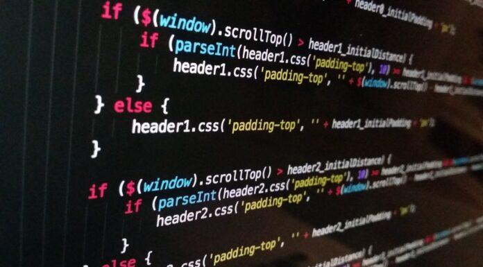 hiring magento developer