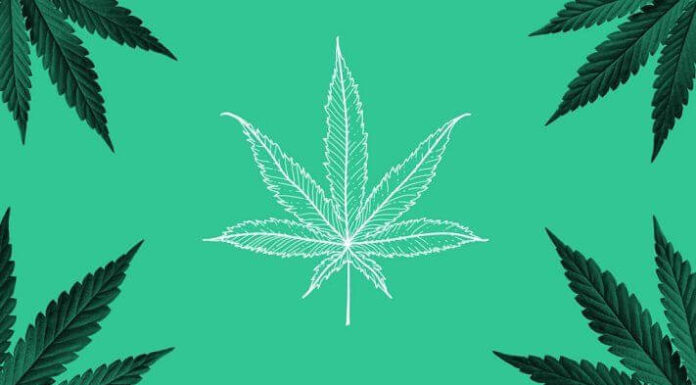 In 2021, here are seven tips for finding reputable cannabis dispensaries.