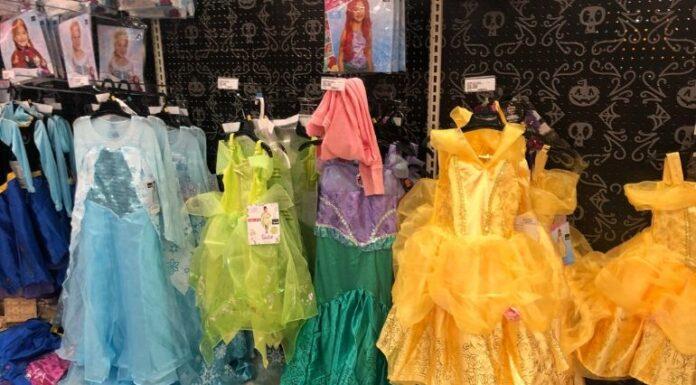 Dress up your Princess