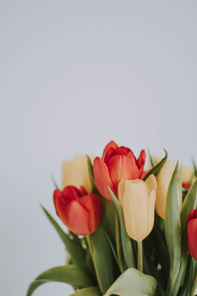 6 Reasons Why Online Flower Delivery Is So Popular